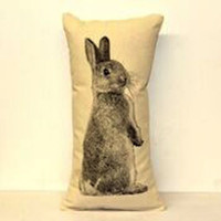 Bunny Screenprint Pillow