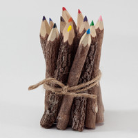 Twig Colored Pencils, Set of 12 - World Market
