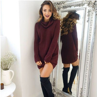 Womens Wine Red High Neck Rib Sweater Dress Autumn Winter +Free Gift - Random Choker