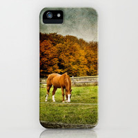 Autumn Grazing iPhone Case by Michelle Anderson | Society6
