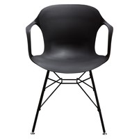 Drake 2-Pack Indoor/Outdoor Accent Chairs in Black Polypropylene (PP) w/ Black Painted Metal Leg