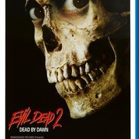 """Evil Dead 2 The poster 24""""x36"""""""