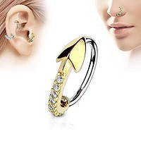 WildKlass CZ Paved Arrow 316L Surgical Steel Nose, Cartilage Hoop Rings