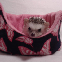 Lily's pink flutter cuddle cup