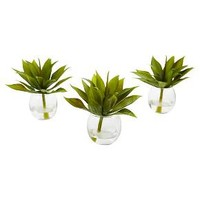 """5.75"""" Mini Agave Succulent Trio in Glass Vases (Set of 3) - Nearly Natural"""
