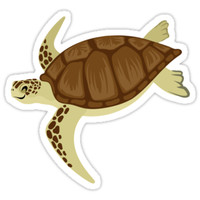 'Happy Green Sea Turtle' Sticker by PepomintNarwhal
