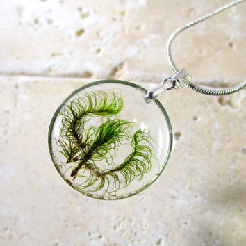 Dicranum scoparium Necklace, moss, bryophyte pendant, woodland, forest, plant jewelry, leaf jewellery