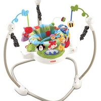 Fisher Price Jumperoo - Discover 'n Grow