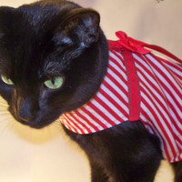 CoolCats Holiday Red and White Candy Stripe Cat Harness