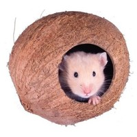 Penn Plax Coconut Cabana Small Animals Hide-Out