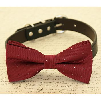 Burgundy Dog Bow tie attached to collar, Dog birthday gift, Pet wedding