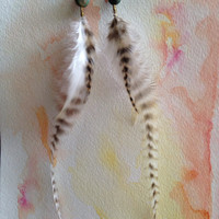 Long and elegant feather earrings - cruelty free feathers and turquoise