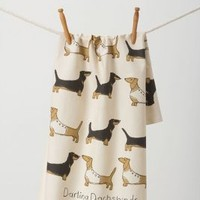 Darling Dachshunds Dishtowel by Anthropologie in Multi Size: One Size Kitchen