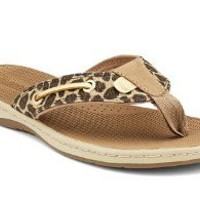 Sperry Top-Sider Women's Seafish Thong Sandal