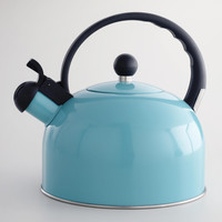 Aqua Enamel Tea Kettle - World Market