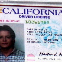 Marty McFly Back To The Future Drivers License Fridge Magnet 2.5 X 3.5 inches