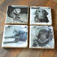 CUSTOM Pet Photo Coaster on travertine tile with resin gloss finish (set of 4)