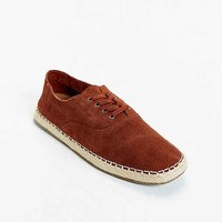 TOMS Camino Suede Lace-Up Shoe