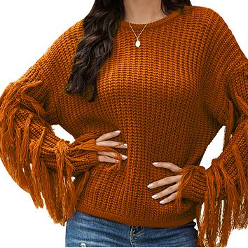 Women's hot style long-sleeved tassel loose knit top