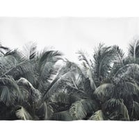 Cozumel Palms - Fleece Blanket, Green Palm Tree Fronds Throw Cover, Coral Fleece Home Decor Surf Tropical Style Accent. Small Medium Large