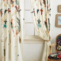 Nests & Nectar Curtain by Michelle Morin Multi