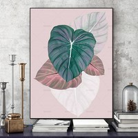 Wall art prints plant Picture Poster  Wall art Picture decor canvas painting  the paintings on the Wall Picture no frame
