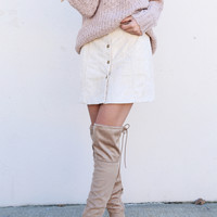 Light Taupe Button Down Suede Skirt