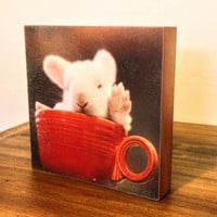 Tea Party Wall Panel - fine art photography, 8x8 wooden art panel, nursery print, ready to hang, one of a kind, kid's room, bunny, teacup