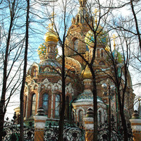 Church on Spilled Blood. Ancient architecture. Landscape photography. Winter. Onion domes. Trees. St. Petersburg, Russia. 8.5x11 print.