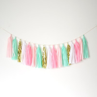 Mint Green and Pink Tassel Garland - Pink Party Decor, Mint and Gold Decor, Birthday Party, Mint Nursery, Baby Shower and Party Decoration