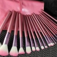 Lovely Pink 22pcs Cosmetic Makeup Brush Set