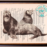 Duo Brown Sea Harbor Seals Drawing Beautifully Upcycled Vintage Dictionary Page Book Art Print