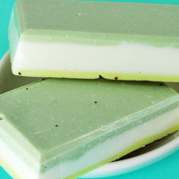 Salt Soap - Sage, Sweet Grass, and Cedar Scent - Salt Scrub Soap Bar - Goats Milk Soap - Exfoliating Seeds