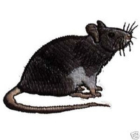 Fancy Black Self Rat Steam Punk  Iron on Patch by DrChameleon