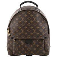 Louis Vuitton Palm Springs Backpack Monogram Canvas MM