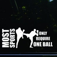 MOST SPORTS only require ONE BALL - MMA funny die cut vinyl decal / sticker