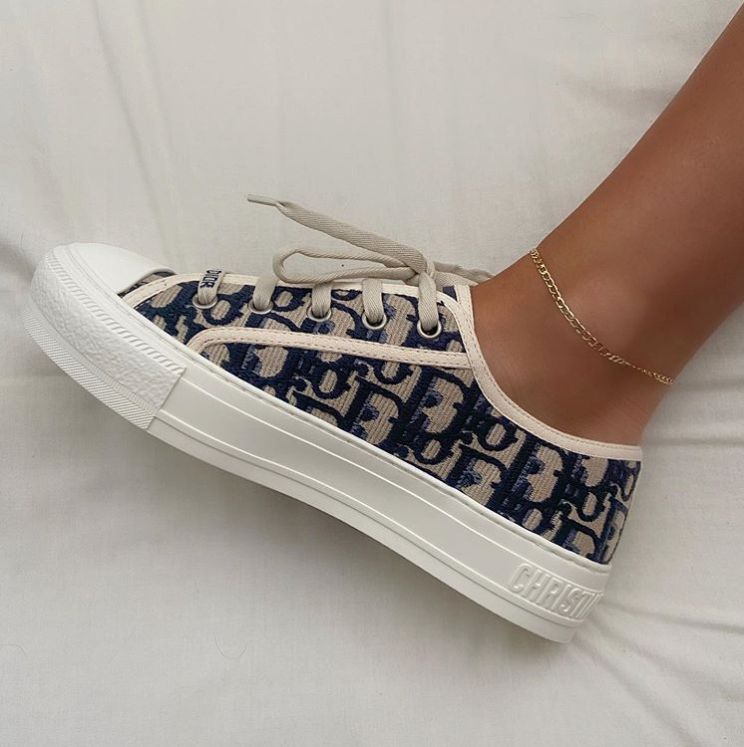 Image of Dior Low-top Canvas Sneakers