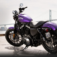 2014 Sportster® Iron 883 Products
