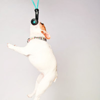 Upcycled Rubber Tug of War Dog Toy Gift Idea for Dog Lovers