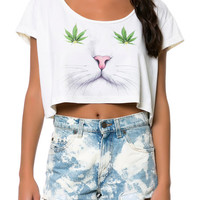 The Catnipped Crop T-shirt in Creme