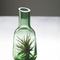 Green Glass Air Plant Vase // Airplant in Small Blown by tohold