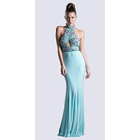 Long Fitted Jersey Gown Mint Beaded Halter Neckline Open Back