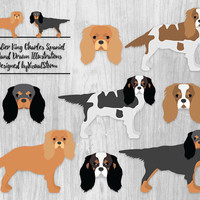 Cavalier King Charles Spaniel Dog Clipart Toy Dogs Spaniels Black Tan Tricolor Ruby Blenheim United Kingdom Dog Faces Pet Scrapbook Clipart