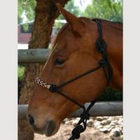 Kensington Rope Halter and Poly Lead