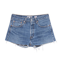 RE/DONE The Short Button Fly Denim shorts in used look - Jeans