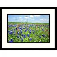 Great American Picture Bluebonnets and Indian Paintbrushes Framed Photograph - James Denk - IS100612 - Decor