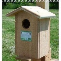 Songbird Essentials SESC1035C Screech Owl Bird House