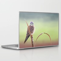 American Kestrel  Laptop & iPad Skin by North Star Artwork