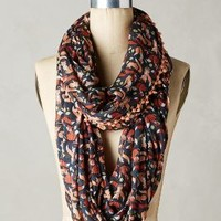 Foxes Infinity Scarf by Anthropologie Navy One Size Scarves