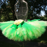 I Believe Fairy Tutu Green Tinkerbell Inspired by linktowhat